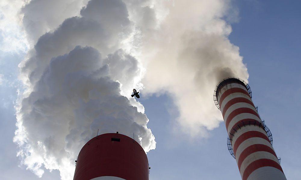 Junge Österreicher sind klimabewusst
