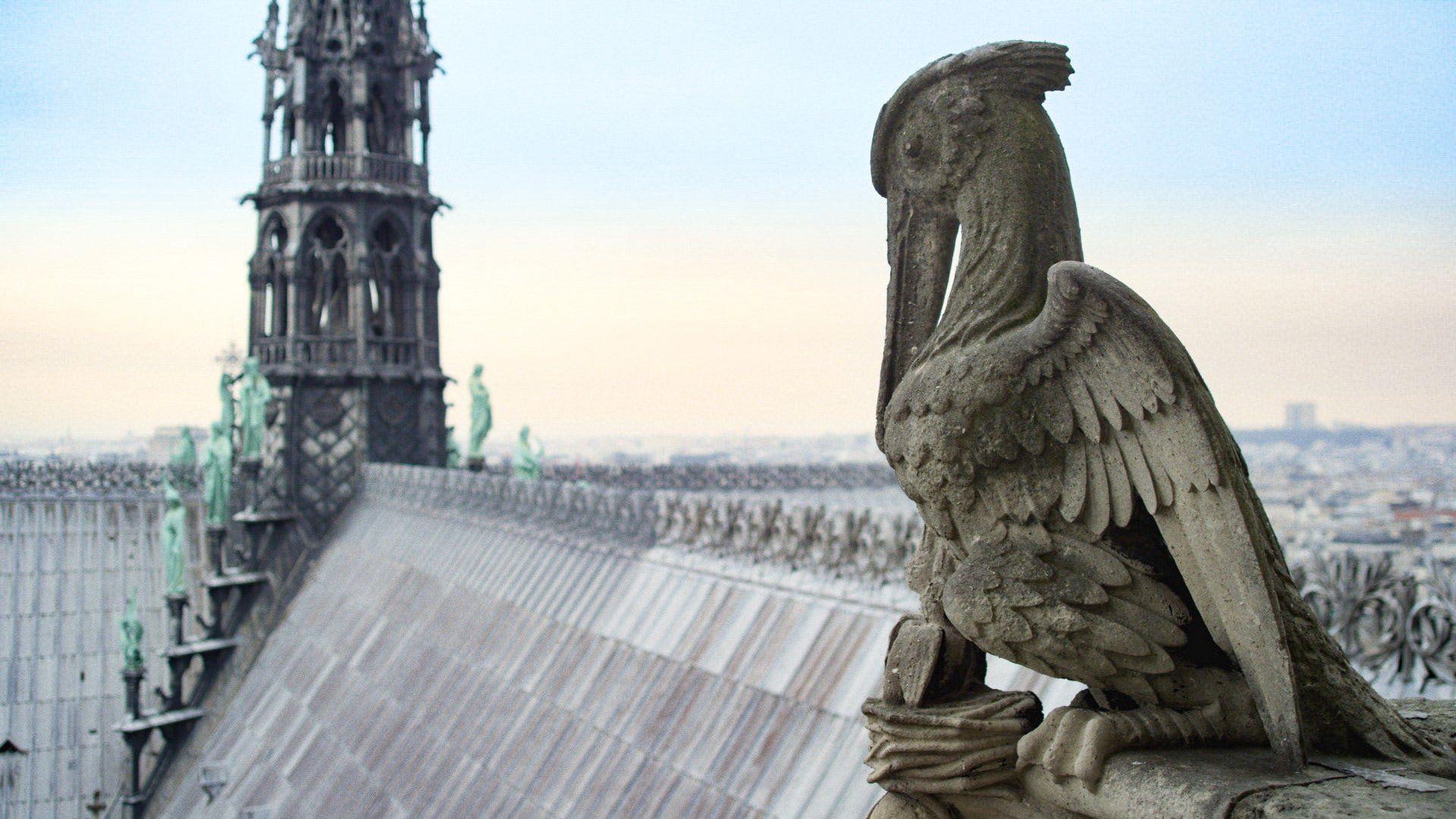 Notre-Dame nicht mehr komplett originalgetreu