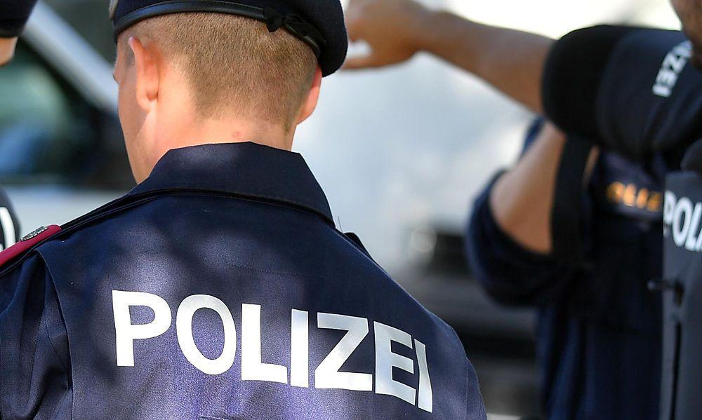 Betrunkene Brüder gingen auf Polizei los