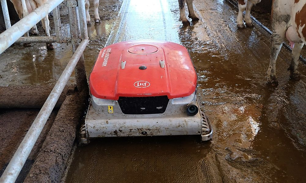 Entmistungs- roboter ersetzt Spaltenboden