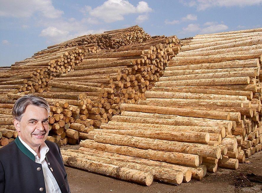 Holzindustrie: Bilanz über das Jahr 2020