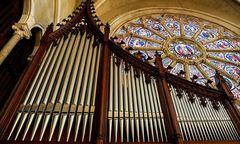 Orgel in der Herz-Jesu-Kirche / Bild: Stefan Pajman/Ballguide