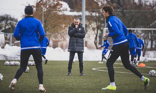 Fokussiert: Coach Peter Pacult