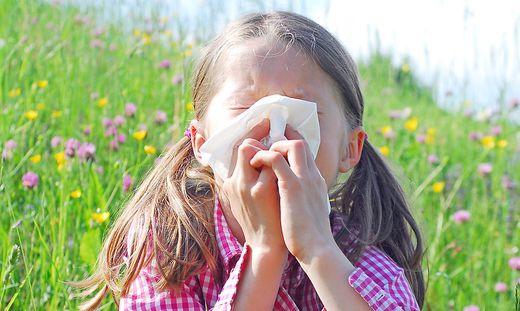 Immer mehr Menschen reagieren allergisch auf Pollen. Heuer droht starke Belastung