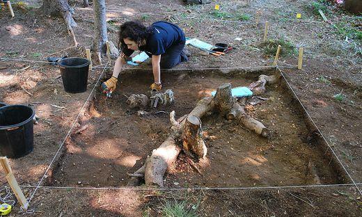 Teile des Wracks haben die Studenten schon ausgegraben