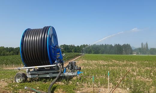 So wird auf Reichholds Feldern bewässert