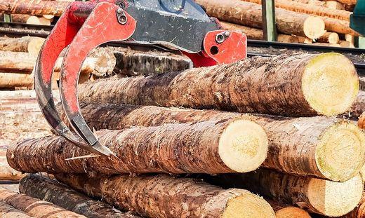 Mit vorgetäuschten Holzgeschäften sollen 90.000 Euro ergaunert worden sein