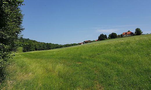 Rückhaltebecken Feuerbach in Voitsberg