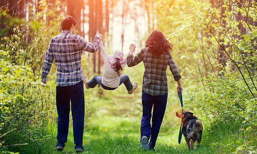 Spaziergänge im Grünen können die körperliche und geistige Gesundheit fördern.