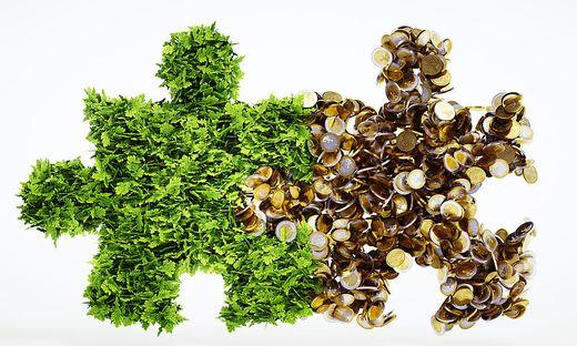 Nachhaltigkeit und Wirtschaftlichkeit müssen kein Widerspruch sein – beides passt gut zusammen