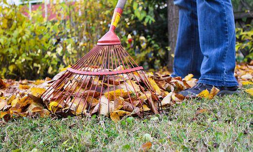 Bei Blättern und Nadeln vom Nachbargrund gilt: Selbst ist der Mann oder die Frau!