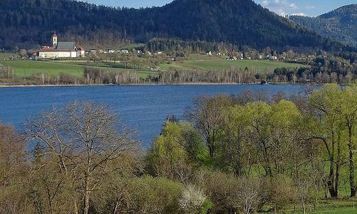 Wie zehn andere Kärntner Seen ist auch der Längsee im Besitz der Bundesforste