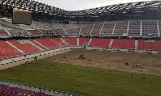 Der Fertigrasen wird im Stadion verlegt