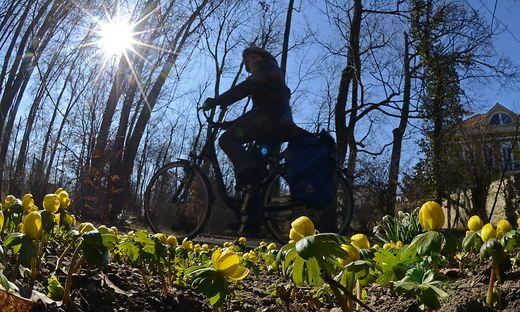 Der Samstag eignet sich super für eine Radtour