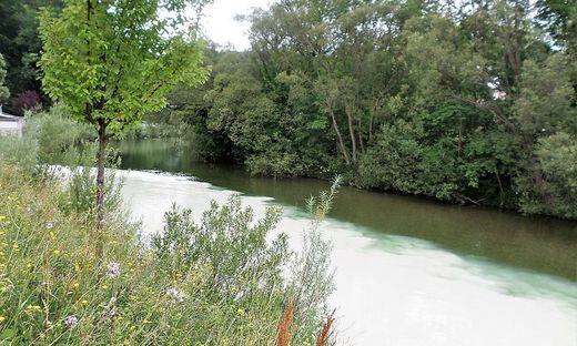 Die Schwarza direkt nach der Einmündung des Auebaches, der den Fluss weiß verfärbt