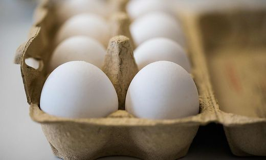 Die Erzeugerpreise müssten nun um mindestens 2 Cent pro Ei angehoben werden, fordern die Eier-Produzenten
