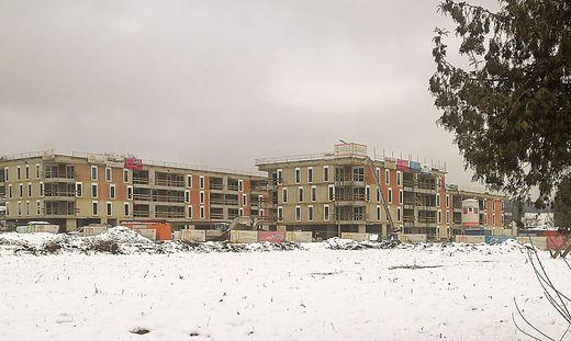Der Siedlungsdruck gefährdet in Hart schon die örtliche Identität.