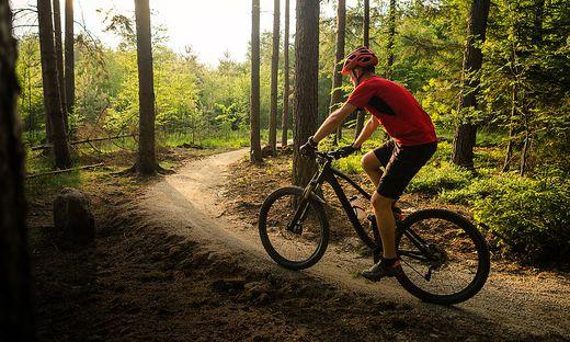 Das Biken im Wald polarisiert