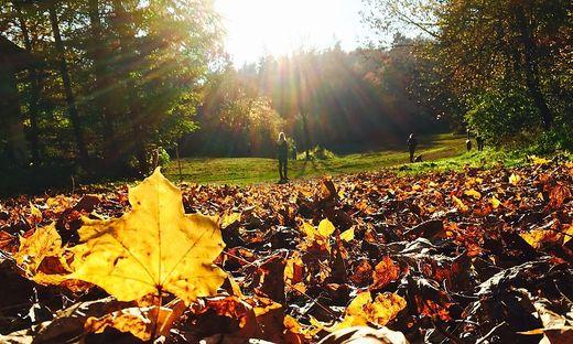 Sonniger Herbstspaziergang auf dem Kreuzbergl in Klagenfurt