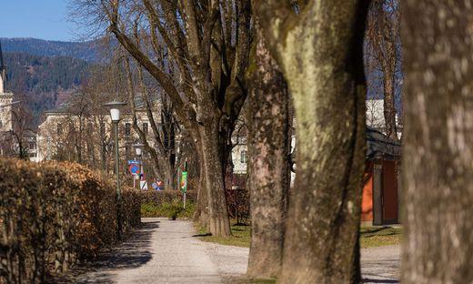 Im Stadtpark in Villach wurden Anzeigen ausgesprochen
