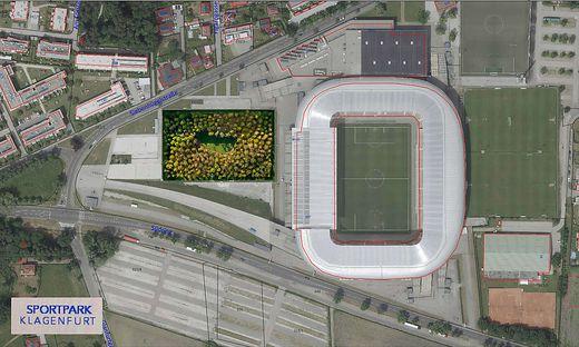 Der Wald vor dem Stadion: Das wird es nicht geben