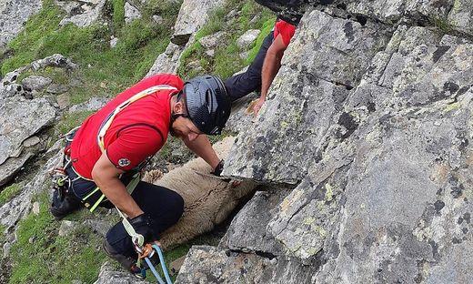Kein alltäglicher Einsatz für die Bergretter