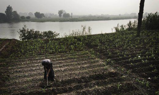 Ägypten ist auf das Nilwasser angewiesen. Es ist seit Jahrtausenden die Existenzgrundlage des Landes