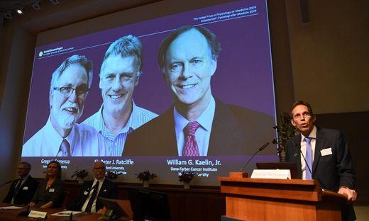 Medizin-Nobelpreis geht an drei Zellforscher