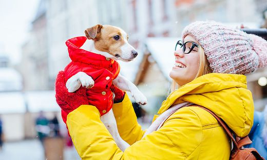 Portrait of lovely young woman traveler in eyeglasses, yellow jacket, leather backpack warming his freezing cute Jack russel terrier dog in red jacket outdoor over winter market square european city.