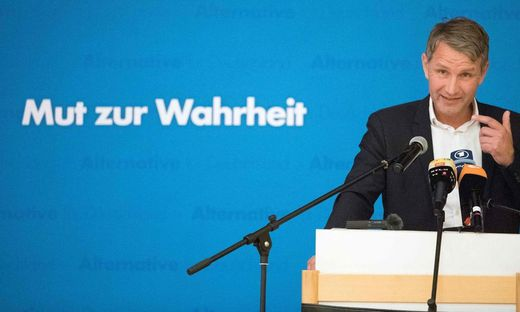 GERMANY-POLITICS-PARTIES-AFD-VOTE-ELECTION