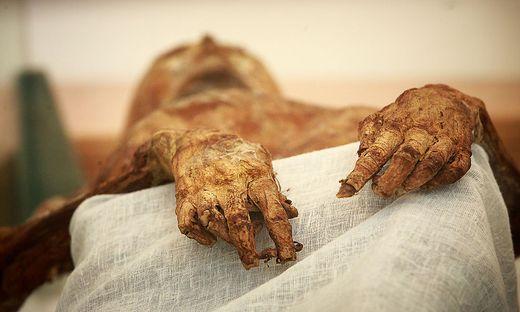 Insgesamt soll man 42 Mumien im Dom gefunden haben