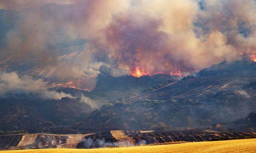 Fire In The Difesa Grande Forest In Gravina In Puglia