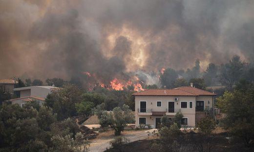Das Feuer hat das Dorf Afidnes erreicht, das 30 Kilometer nördlich von Athen liegt