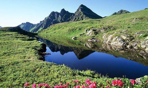 Sorge um die Natur am Berg wegen menschlicher Exkremente