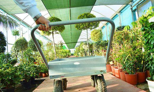 Schlechte Beratung zu Pestiziden