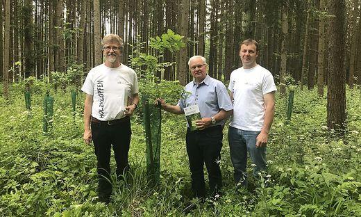 Landwirtschftskammerobmann Johann Reisinger, Harald Ofner und Siegfried Wetzelberger vom Waldverband (v.l.)