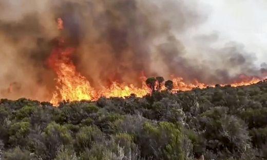 Kilimandscharo in Flammen: Afrikas höchster Berg brennt