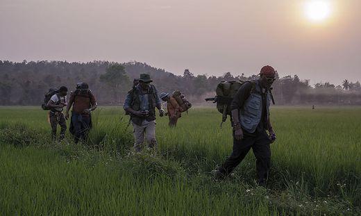 Auf dem Weg in den Dschungel: Vier Blutsbrüder und ein Sohn