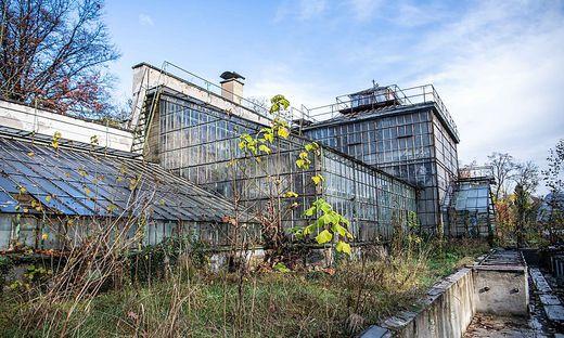 Die historischen Gewächshäuser im Botanischen Garten stehen seit 2008 unter Denkmalschutz