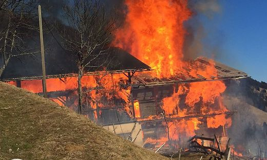 Acht Feuerwehren kämpften gegen die Flammen