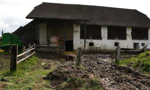 Wie kam es zu der Tiertragödie auf dem Hof in Feldkirchen?