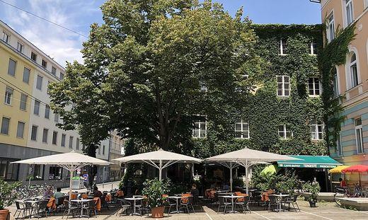 Grüne Fassade Graz Tummelplatz
