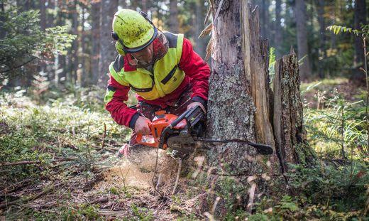 Arbeiter verstarb noch an Ort und Stelle (Sujet Waldarbeiten)