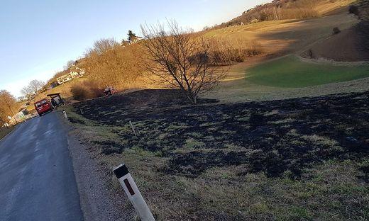 Wiesenbrand in Kapfenstein