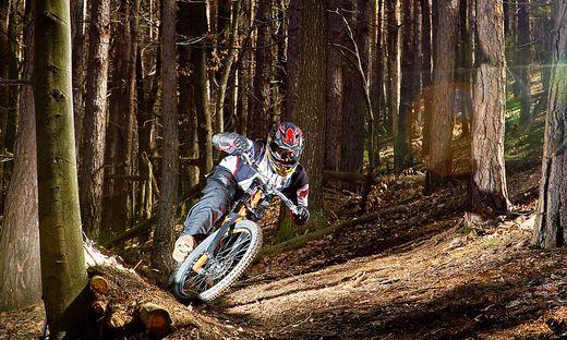 Bremsscheibe überhitzt - Mountainbiker löst Waldbrand aus