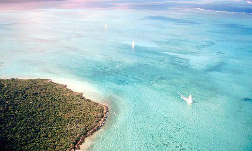 """Mauritius, wie man es auch aus """"Universum"""" kennt"""