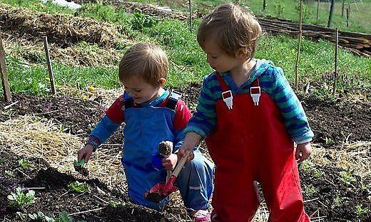 Kinder im Garten beim Pflanzen