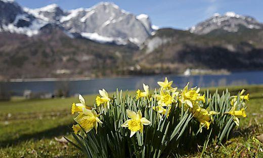 Der Frühling zaubert bunte Farbtupfer ins romantische Panorama am Grundlsee