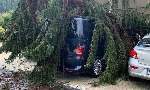 Am Parkplatz der Bezirkshauptmannschaft Murtal stürzte ein Baum auf einen Pkw