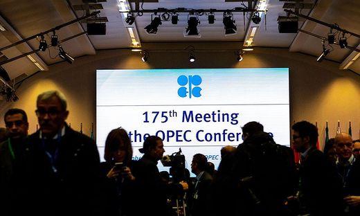 AUSTRIA-OPEC-OIL-ECONOMY-POLITICS